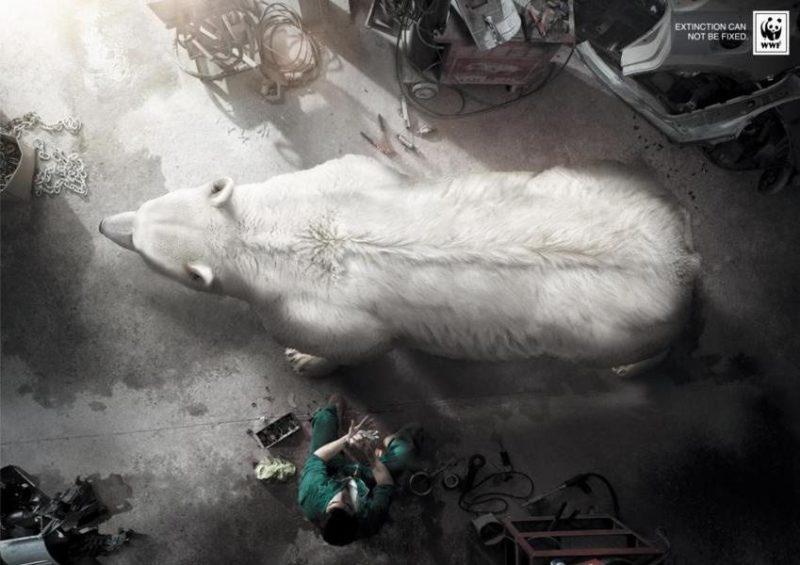 wwf-polar-bear-print-advertisement